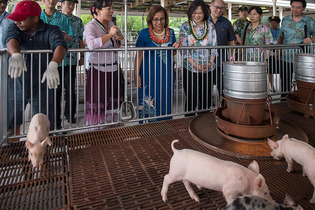 "President Tsai and President Heine inspect how a ""green"" pig farm is designed and how waste is treated and reused."